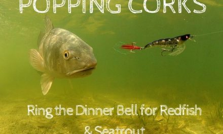 Popping Corks: Ring the Dinner Bell for Redfish & Seatrout