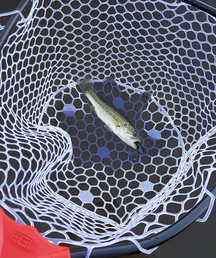 ego s2 slider net with fish